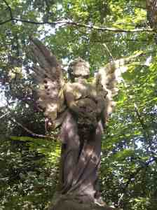 Angels don't fear to tread in a historic cemetery-cum-nature-reserve full of 19th century radical