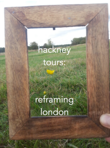 Hackney Tours reframing London marshes flower