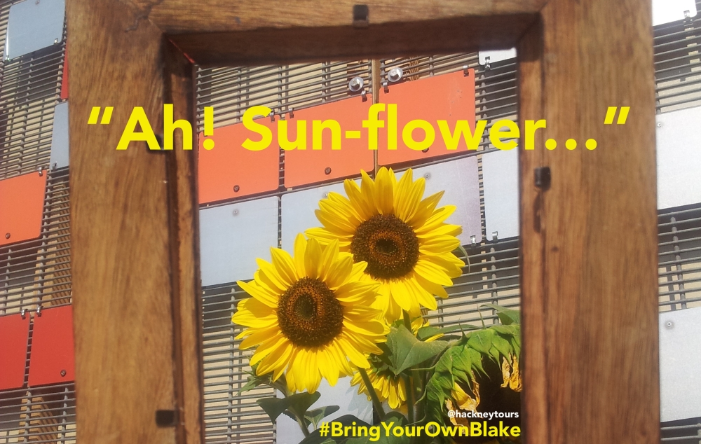 Sunflower framed on side of Hub 67 Hackney Wick oblong Ah Sunflower BYOB HT